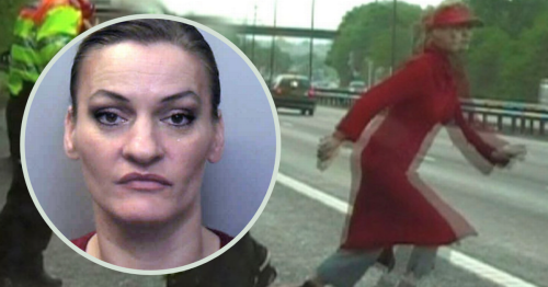 The identical twins who caused chaos on a motorway before one went on to kill