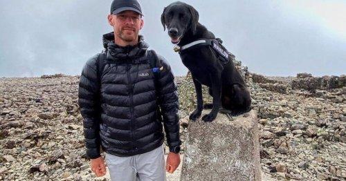 Postman hikes up Welsh mountains alongside rescue dog