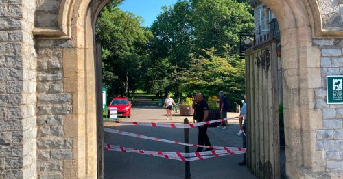 Two men charged with attempted murder after Bute Park assault