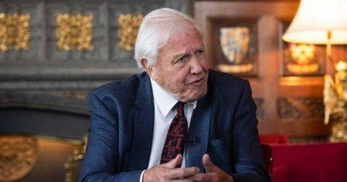 Sir David Attenborough gives stark warning on global future