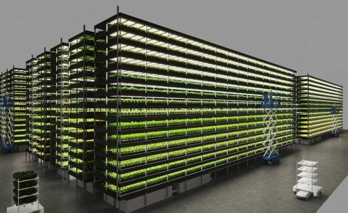 Vertical Farm in Copenhagen reimagines sustainable food