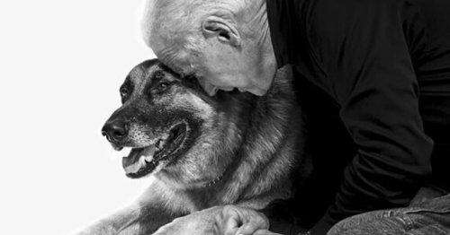 Joe et Jill Biden rendent un hommage bouleversant à leur chien Champ qui vient de mourir