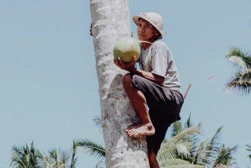 Dein Bali Reiseguide