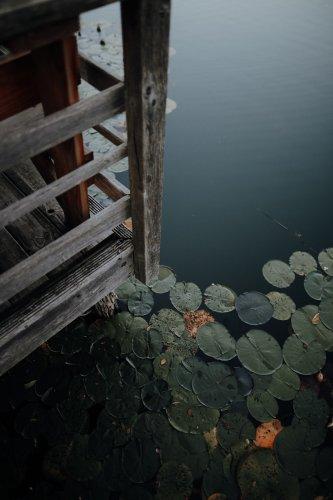Wandern an den Feldberger Seen: Unterwegs auf Falladas Fridolinweg