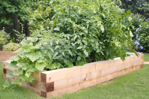 How and why to build a raised garden bed