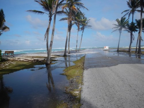 The military paid for a study on sea level rise. The results were scary.