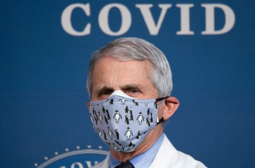 Fauci says wearing masks could become seasonal following the pandemic
