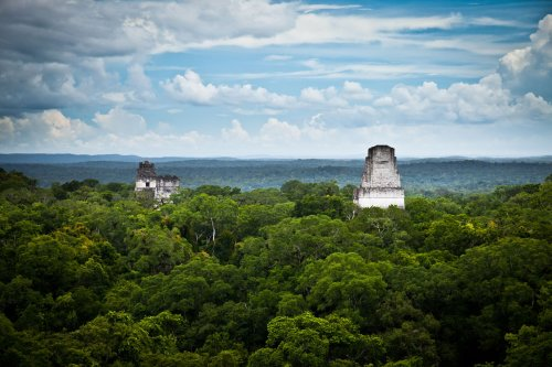 Maya people beat the heat by planting trees in bustling city of Tikal, researchers find