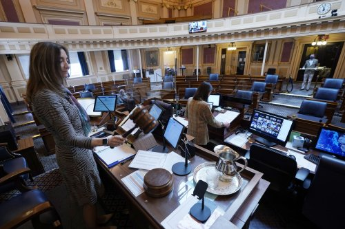 Virginia House Democrats see record number of challenges in primary elections