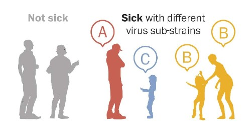 Scientists have a powerful new tool for controlling the coronavirus: Its own genetic code.