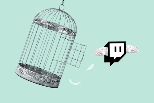The truth behind Twitch's leaked 'do not ban' list