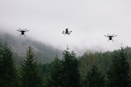 A few idealistic Canadians are trying to replant the world's forests with flying machines