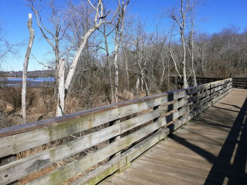 Hiking along Virginia's Aquia Creek and finding history a stone's throw from home