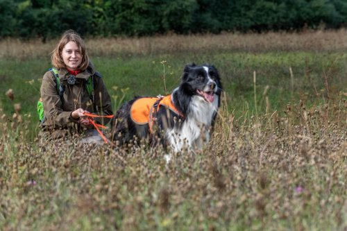 How dogs have a real nose for science when it comes to detecting rare species