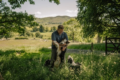 He is Britain's famous shepherd-author-influencer. He wants to transform farming to save the planet.