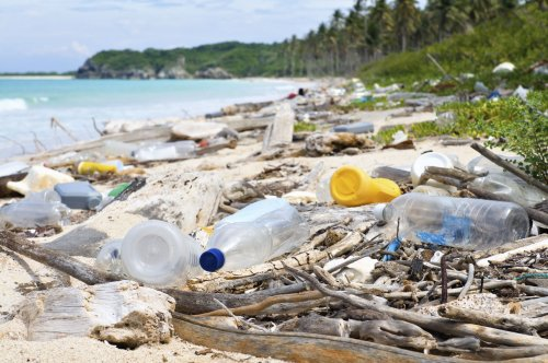 Teacher: No, my lesson to 7th graders on ocean pollution is not indoctrination — even if a state legislator thinks so