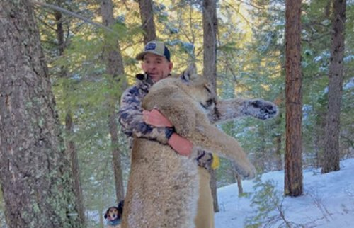 He was banned from having guns after his Capitol riot arrest. Then he shot a mountain lion, feds say.