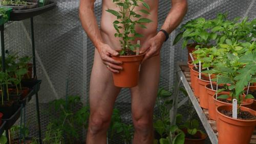 Am Samstag war «Tag der nackten Gartenarbeit» (Ja, du hast richtig gelesen)