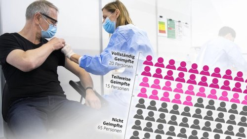 Good News von der Impffront: Die Schweiz ist auf Kurs und die Impfbereitschaft wächst