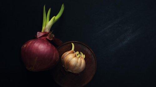 Wenn Zwiebel oder Knoblauch keimt: Essbar oder giftig?