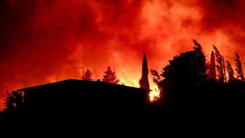 Waldbrände wüten in Türkei und Italien – Fußballstar sagt Hilfe zu