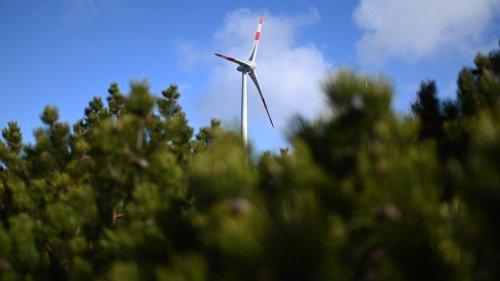 Bundesregierung erhöht Klimaziele – Raschere CO2-Reduktion, frühere Klimaneutralität