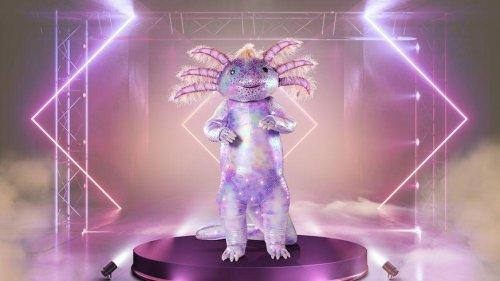 """""""The Masked Singer"""": Das verrät ProSieben über das Axolotl"""
