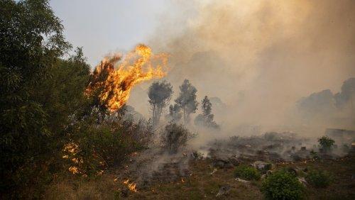 Verheerender Großbrand in Kapstadt: Universität und Tafelberg in Flammen