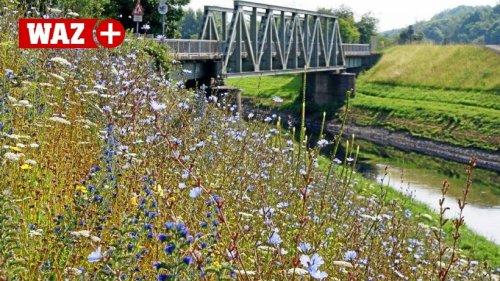 Nach Flutkatastrophe: Experten fordern mehr Raum für Flüsse