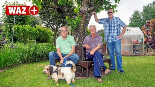 Kleingärtner in Hattingen nehmen spätere Ernte gelassen
