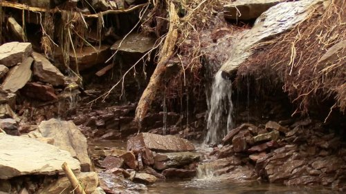An Lenne und Volme: Wassermassen zerstören Waldwege