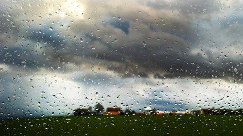 August beginnt regnerisch und kühl - aber keine Unwetter