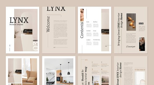 Lynx InDesign Brochure Template