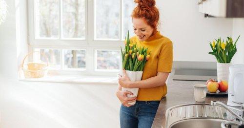 So machen Blumen Ihre Wohnung zu einem besseren Zuhause
