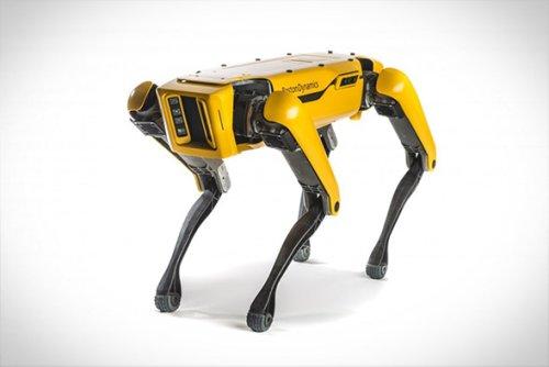 Boston Dynamics Spot Robot | Infinity Masculine