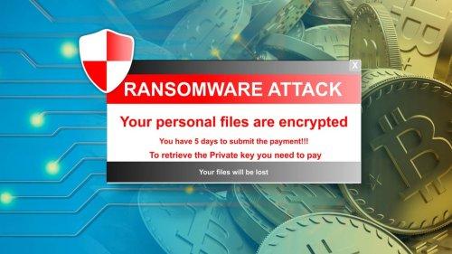 Attacco hacker alla SIAE, rubati 60 gigabyte di dati in vendita - Webnews