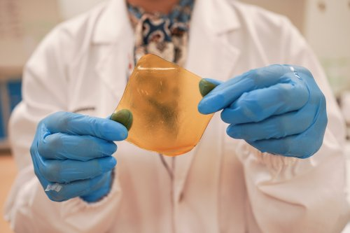 These scientists are making antibacterial bandages out of fruit waste
