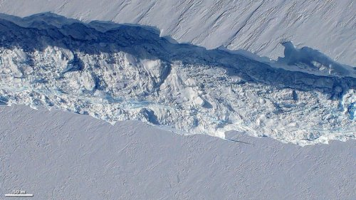 In ten years, this ice sheet could collapse, causing sea levels to rise