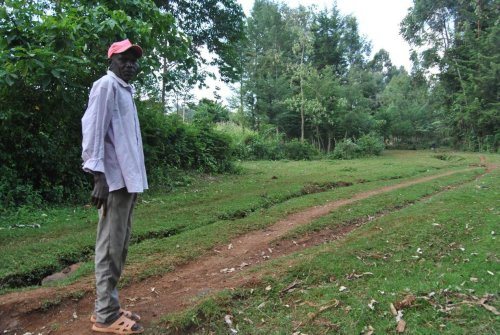 How Kenyan villagers used traditional knowledge of nature to restore their land