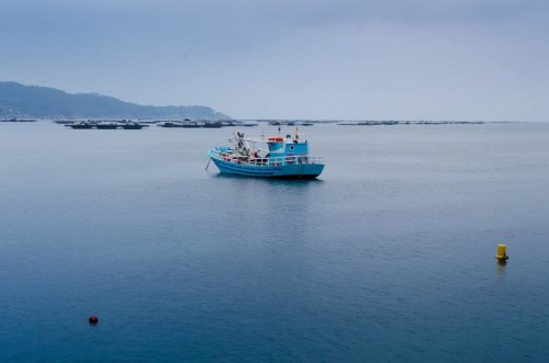 High-tech for the high seas: How the digital wave can help sustainable fisheries