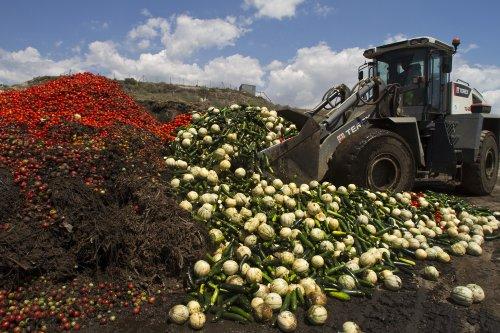 Gaspillage et (in)sécurité alimentaires : les leçons à tirer de la crise sanitaire