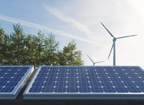 3 ways CEOs can tackle climate change and build a net-zero economy