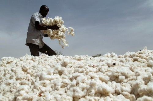 COVID has disrupted Africa's cotton production. Here's how soap could provide a solution