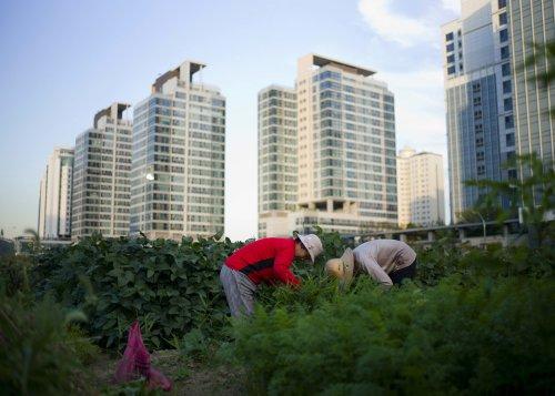 Vers une « nouvelle ère » post-Covid-19 pour l'urbanisme