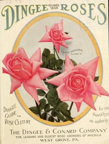Historical Seed Catalogs – 104 in a series – Dingee guide to rose culture : for more than 60 years an authority (1915)