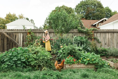 Mulching Your Garden Saves Water and Prevents Weeds—Here's How To Do It Correctly