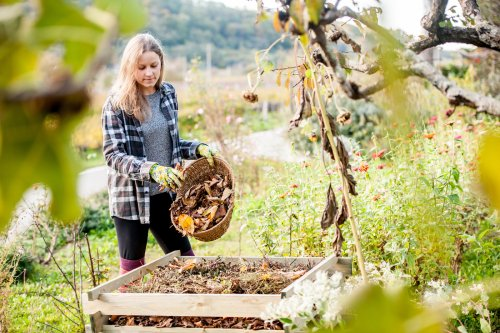 4 Fall Cleanup Tips To Help Your Garden Reach Its Full Potential Come Spring