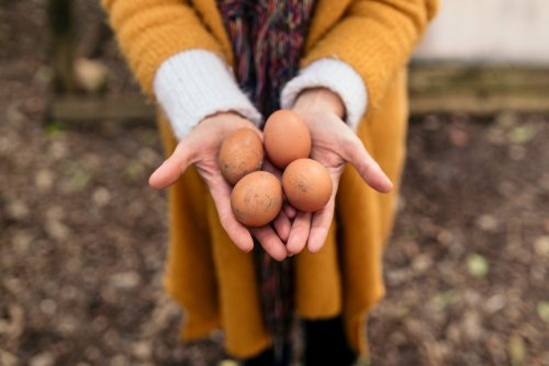 Eggs Go Bad Sooner Than You Think—Here's How To Tell if Yours Are Still Fresh