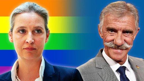 AfD auf der Rutschbahn der Homophobie