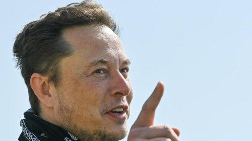 """""""Volkswagen ist eine Ikone"""", sagt Elon Musk – und gibt dem Chef Tipps"""